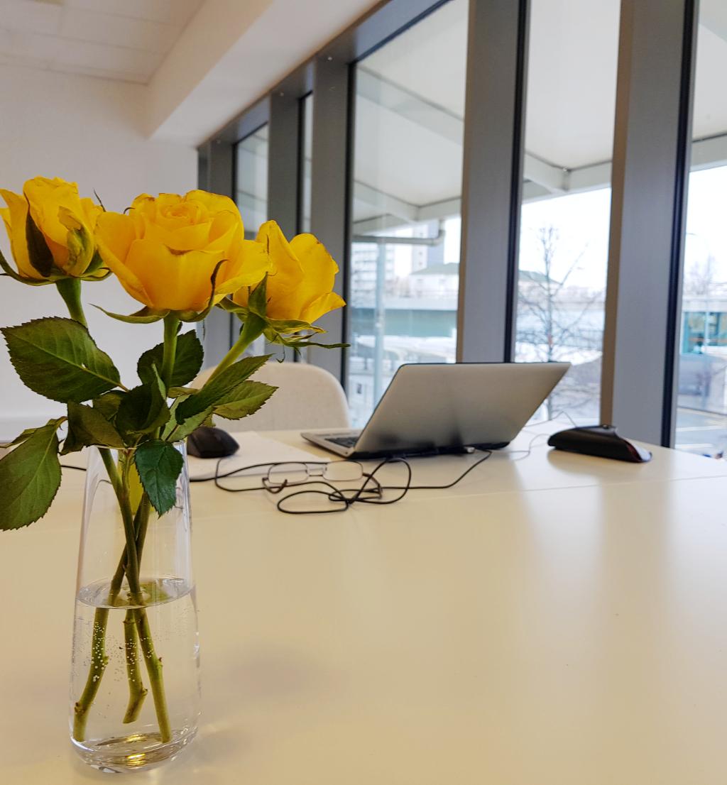 Rentadesk+Shepherds+Bush+co-working+space+-+Desk+Space.jpg