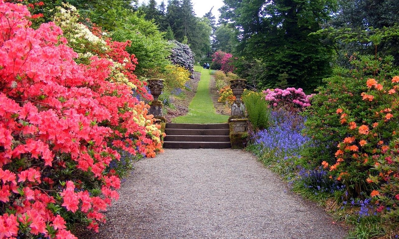 garden-470704_1280.jpg