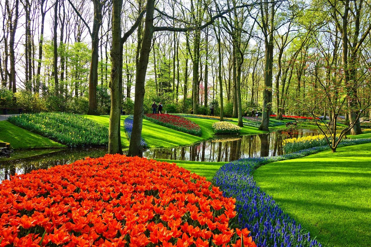 garden-3345970_1280.jpg