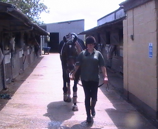 KELLY MASTERMAN-SMITH - YARD SUPERVISORBHS Stage 3 Care, lunge, ride. BH stage 2 Teach, ABRS ITA, NVQ III, H&S cert, 1st aid, CPCKelly joined us on a trainee scheme, she had ridden with us prior to starting work and has now achieved her NVQ 2 in Horsecare and Riding and her NVQ 3.She enjoys working with her clients, both children and adults and seeing them enjoy their lessons and make progress.