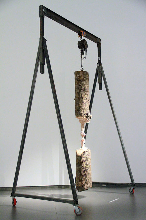 "Study for Cord Progression , 2017, Ash tree trunk, gantry, rigging hardware, 132"" x 24"" x 32"""