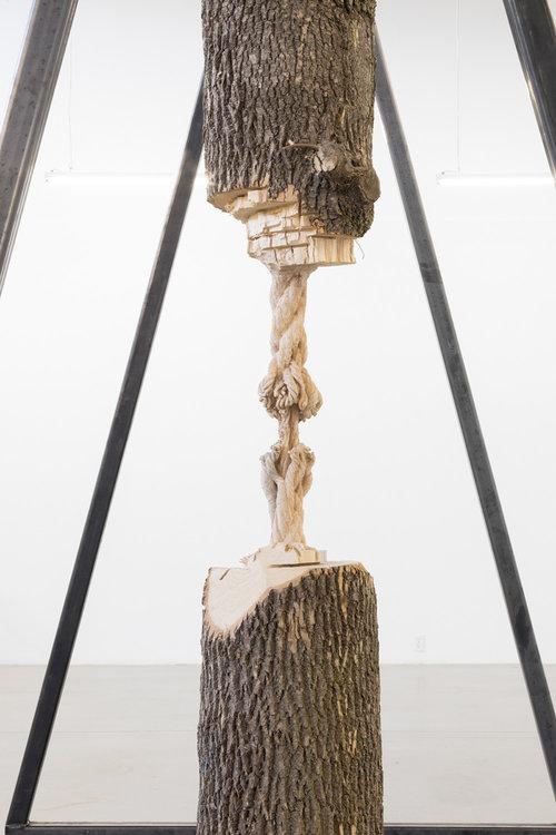 "Study for Cord Progression , 2017, Ash tree trunk, gantry, rigging hardware, 132"" x 24"" x 32"" (Detail)"