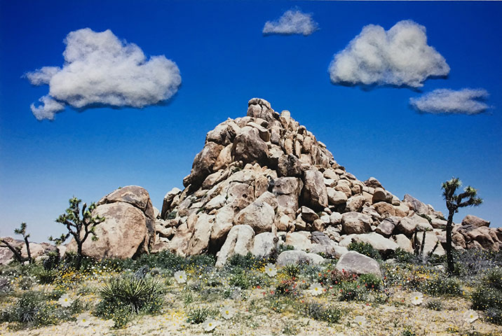 "Rock Pile (Cotton Balls) , 2018, Edition of 3, pigment print, plastic flowers and cotton balls, 28"" x 42"""