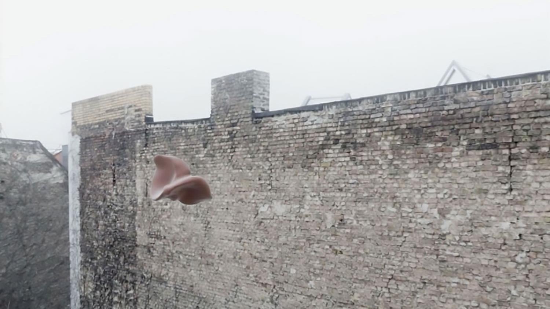 Will Deliquesce,  2018, Edition of 4, 4K Video
