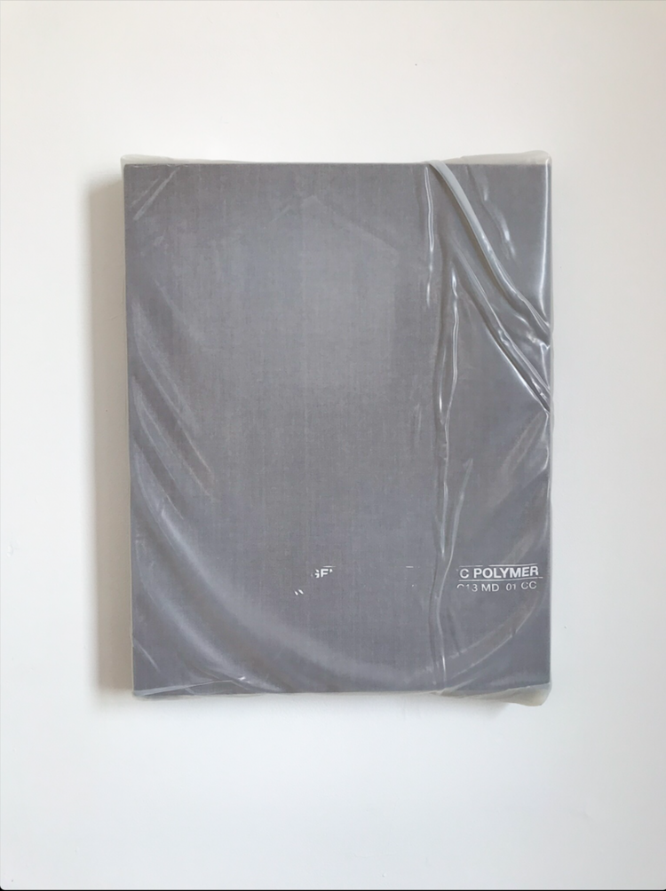 Monochrome With Poly Wrap, 2018, Acrylic On Linen