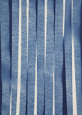 """Chutes , 2015, Cyanotype on arches paper, 30"""" x 22"""""""