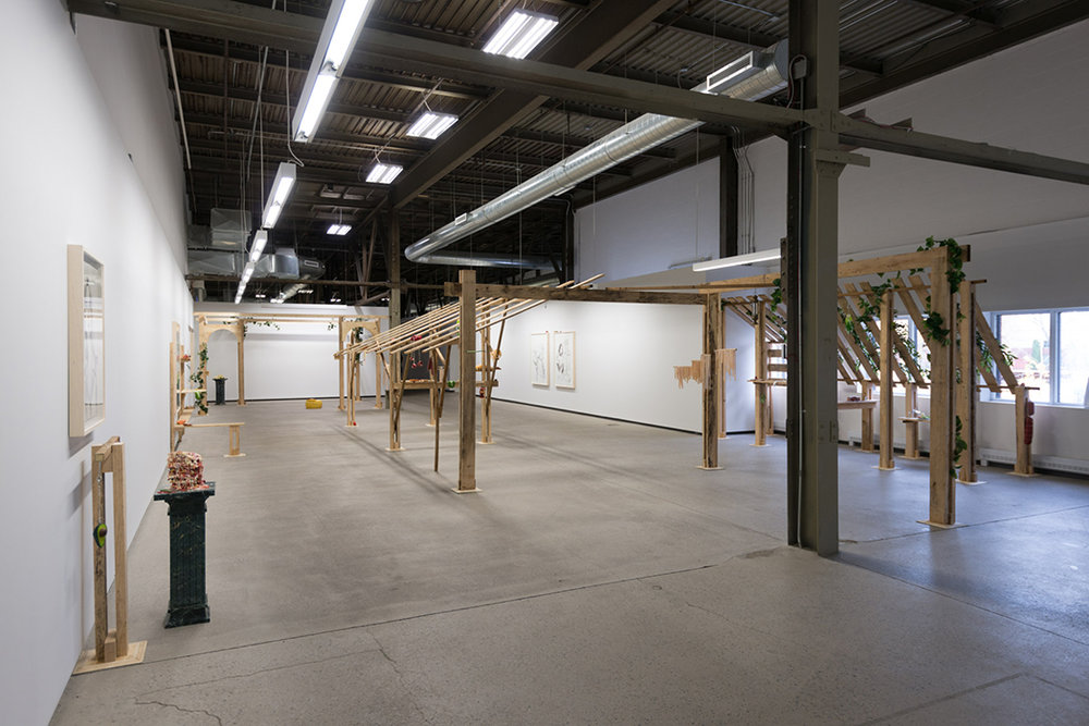 Installation view - Cantina