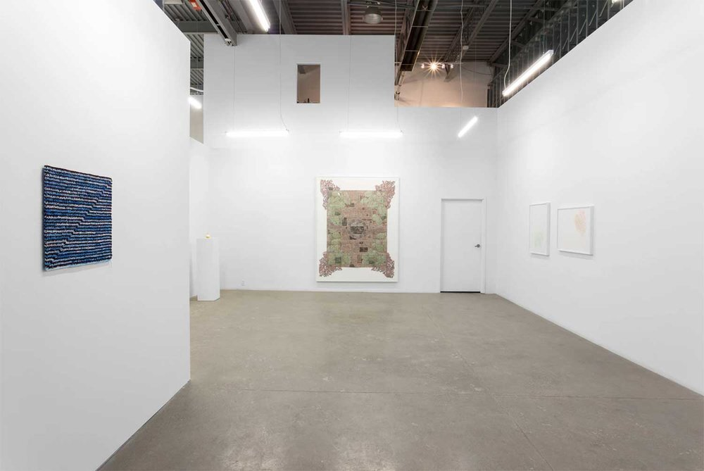 Installation view, Not Too High, Not That Low, Division Gallery, Toronto