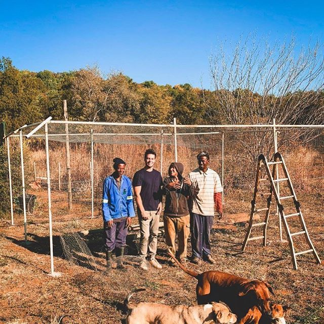 Greeting by the start of the new chicken tractor ❤️😊 #permaculture #farm #chickens #pdc #permaculturecourse #volunteering #ecofarm
