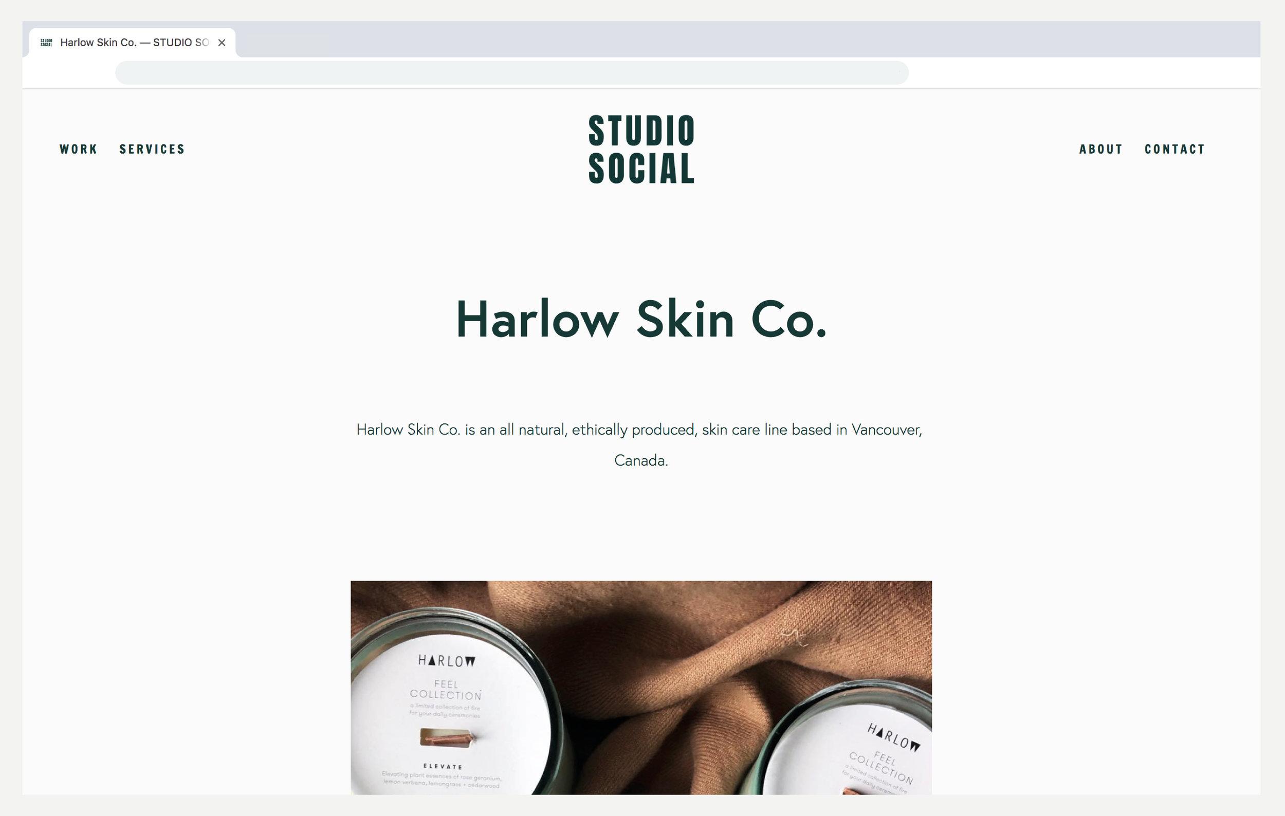 Website_SS2.jpg