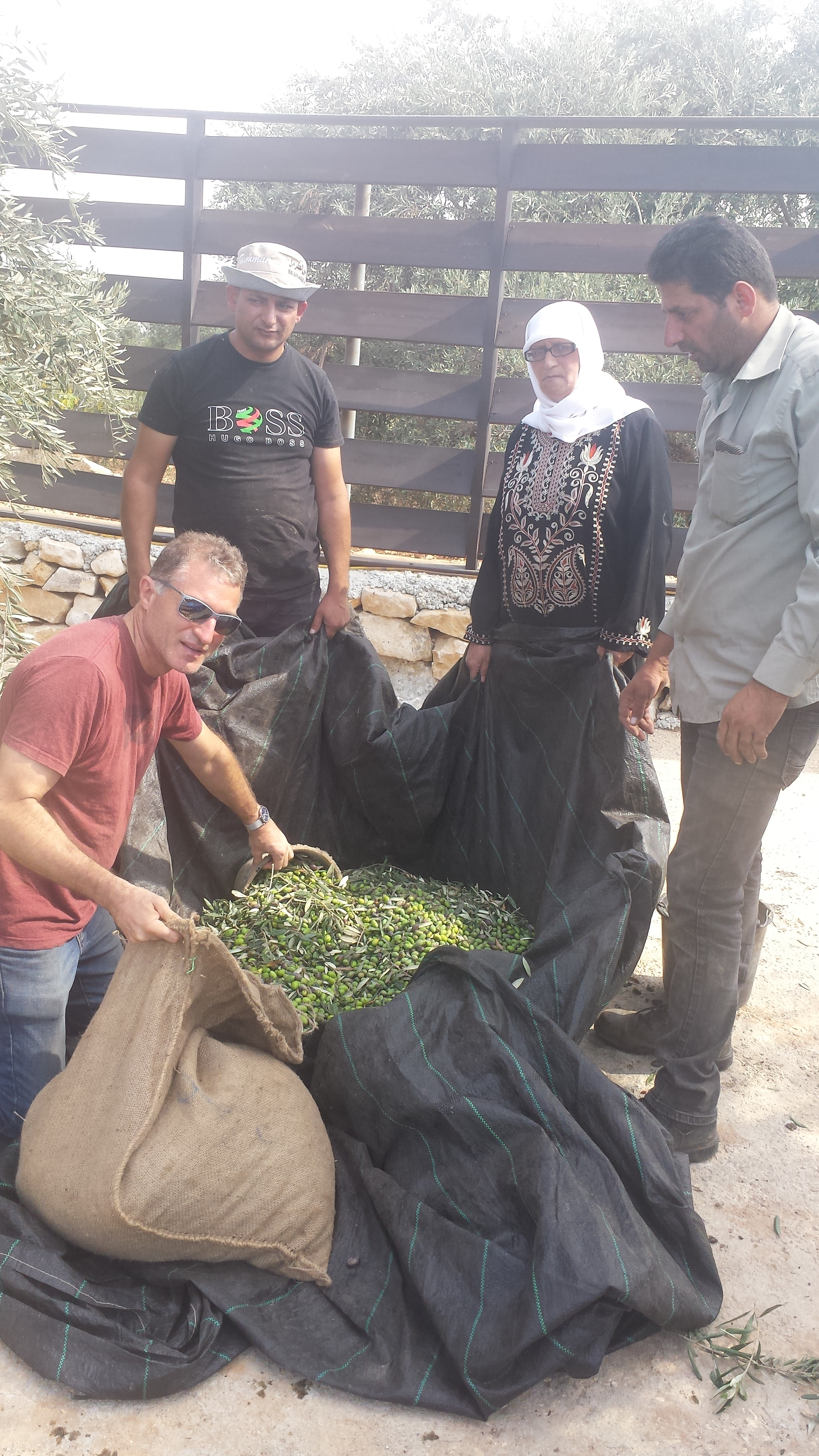 Olive sacks - Maad - Hamadnehs - Megan.jpg