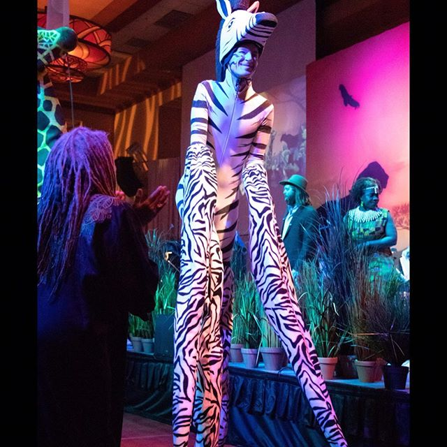 All these #LionKing trailers are making us so excited for the movie, but also grateful to have been apart of our very own Lion King production. It's the #CircleOfLife! #MomentsNoticeEntertainment #PureJoy #Unforgettable . . . . . #NeverStopDancing #BestProduction #AfricanThemeParty #DoItForCharity #ForACause #MeaningOfLife #BestWeddingEntertainment #BestCorporateEvents #BestLiveMusic #BestMusicVenues #LiveMusicDenver #WillTravelForMusic #DestinationEvents