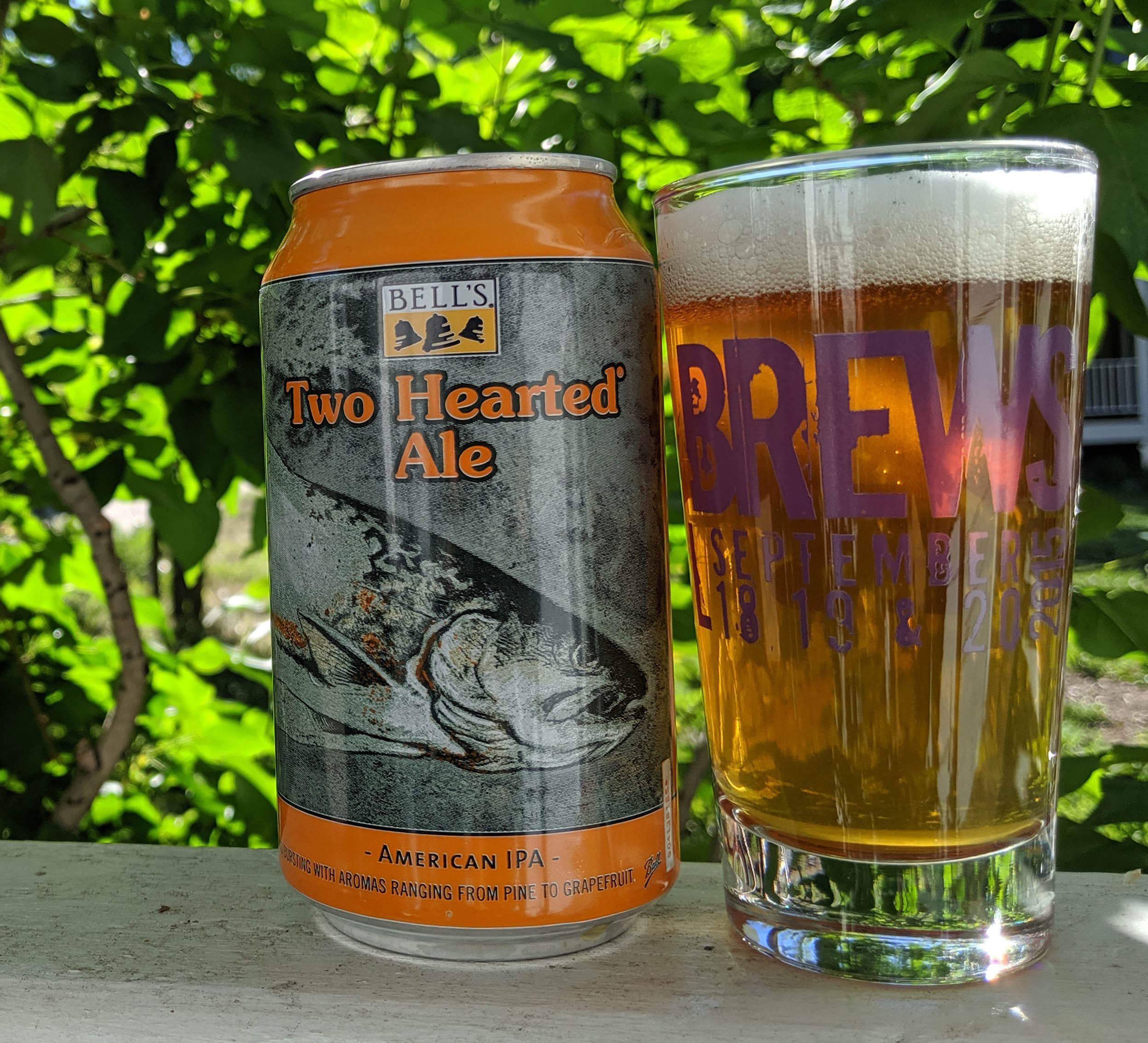 Telluride Blues & Brews Festival | Taste Tease Two Hearted Ale