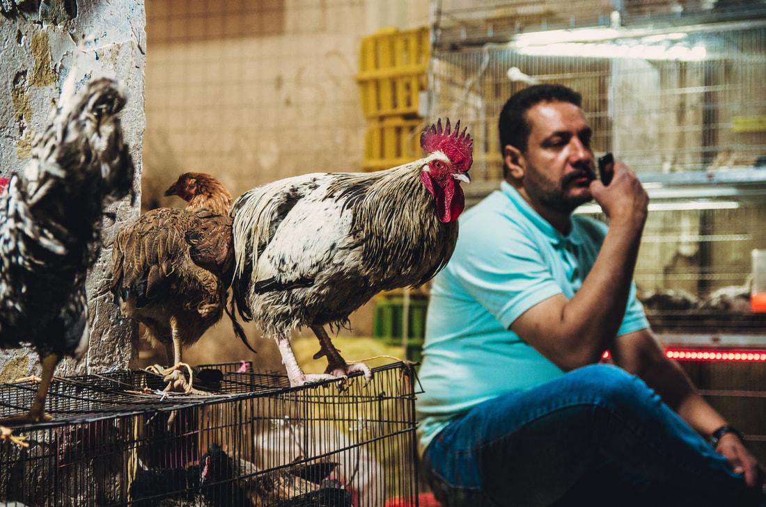 Iran Travel www.folin (12).jpg