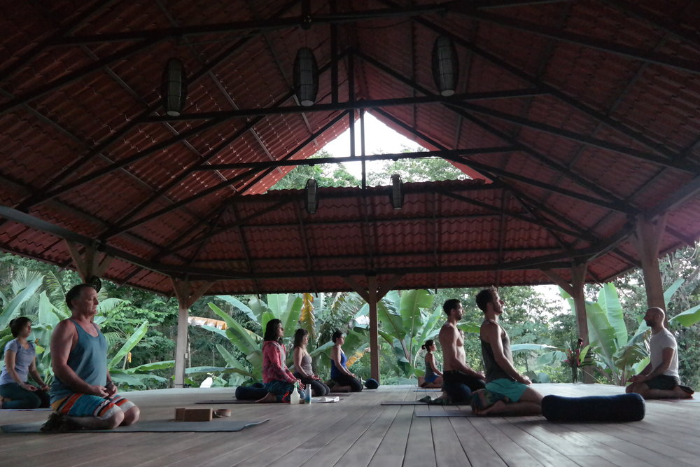 OM at Cashew Hill - Self | Nature | Others