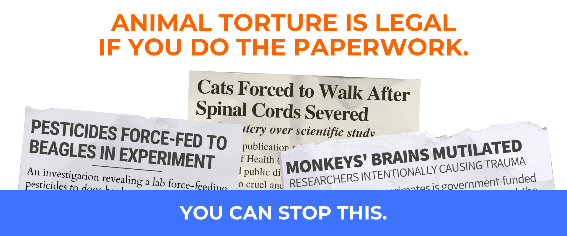 Web.Stop Legal Animal Torture.png