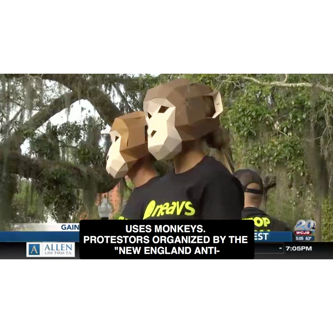 """""""Protesters gather at UF to fight against animal testing"""" - April 25, 2019""""Protesters, organized by the New England Anti-Vivisection Society, say researchers are shocking rhesus monkeys and injecting them with nicotine and other drugs."""""""