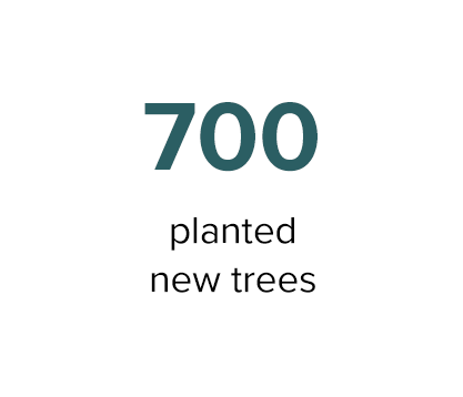 5_Trees.png