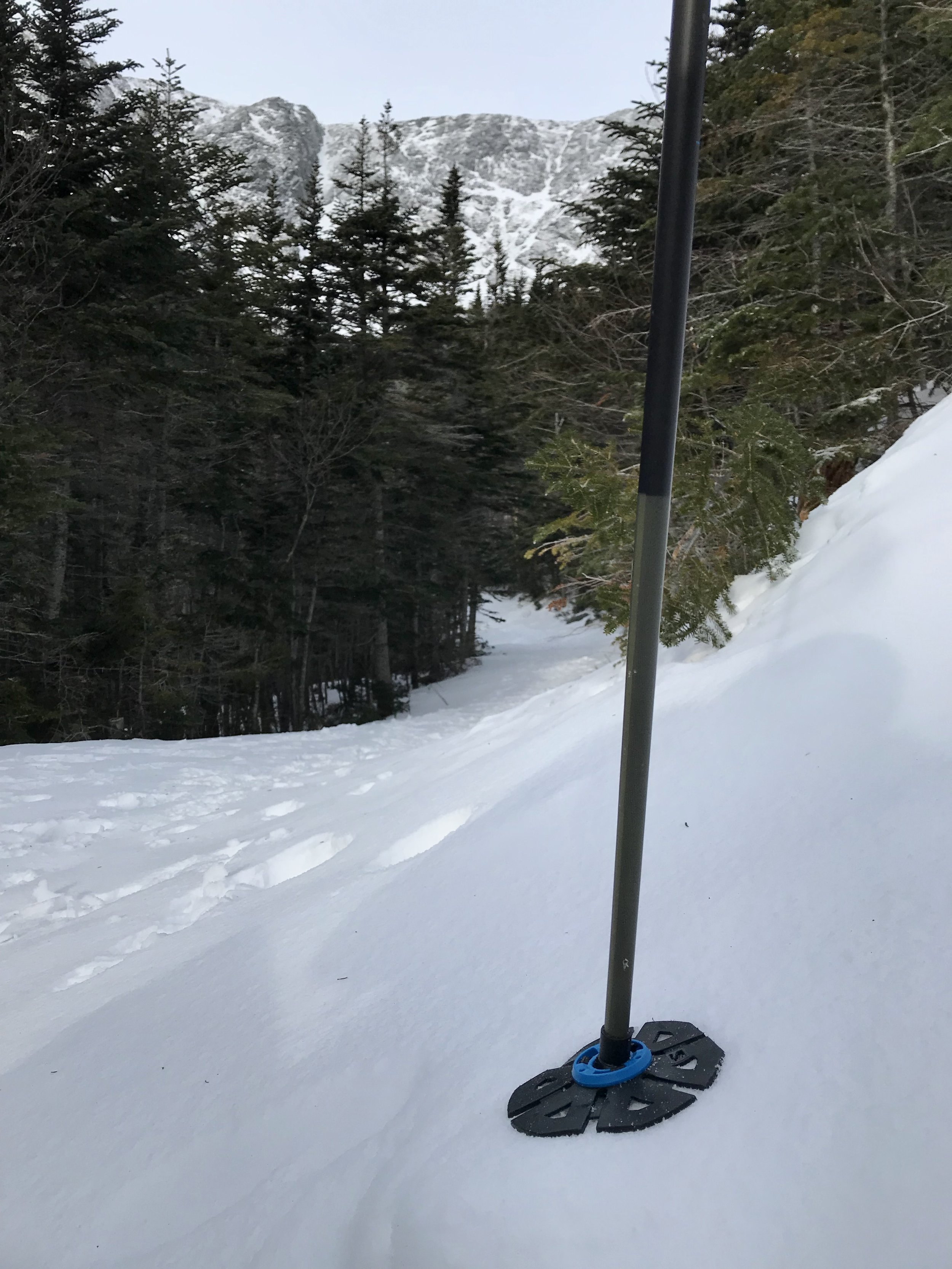 Even on firm snow the basket moves around to allow you to plunge the pole tip as deep as possible.