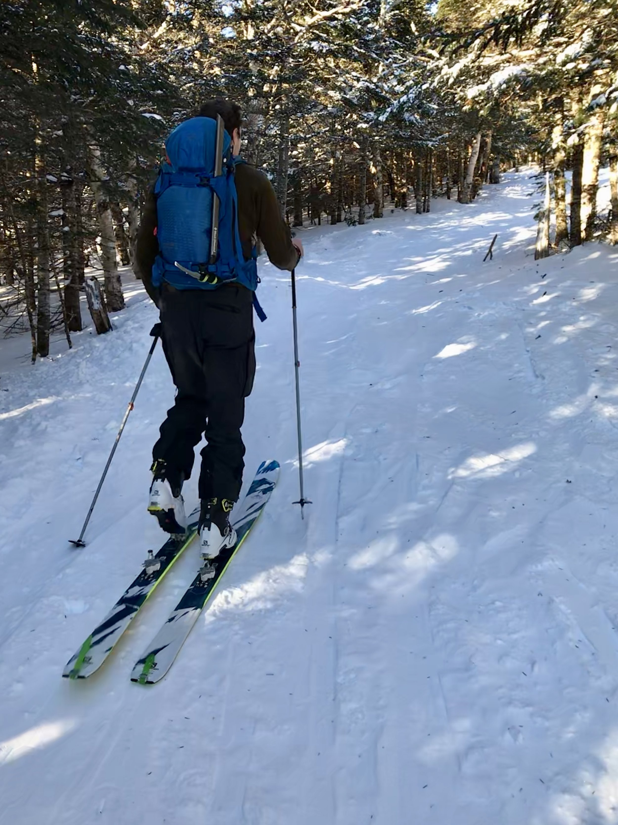 Skinning into a winter wonderland on the Gulf of Slides Trail