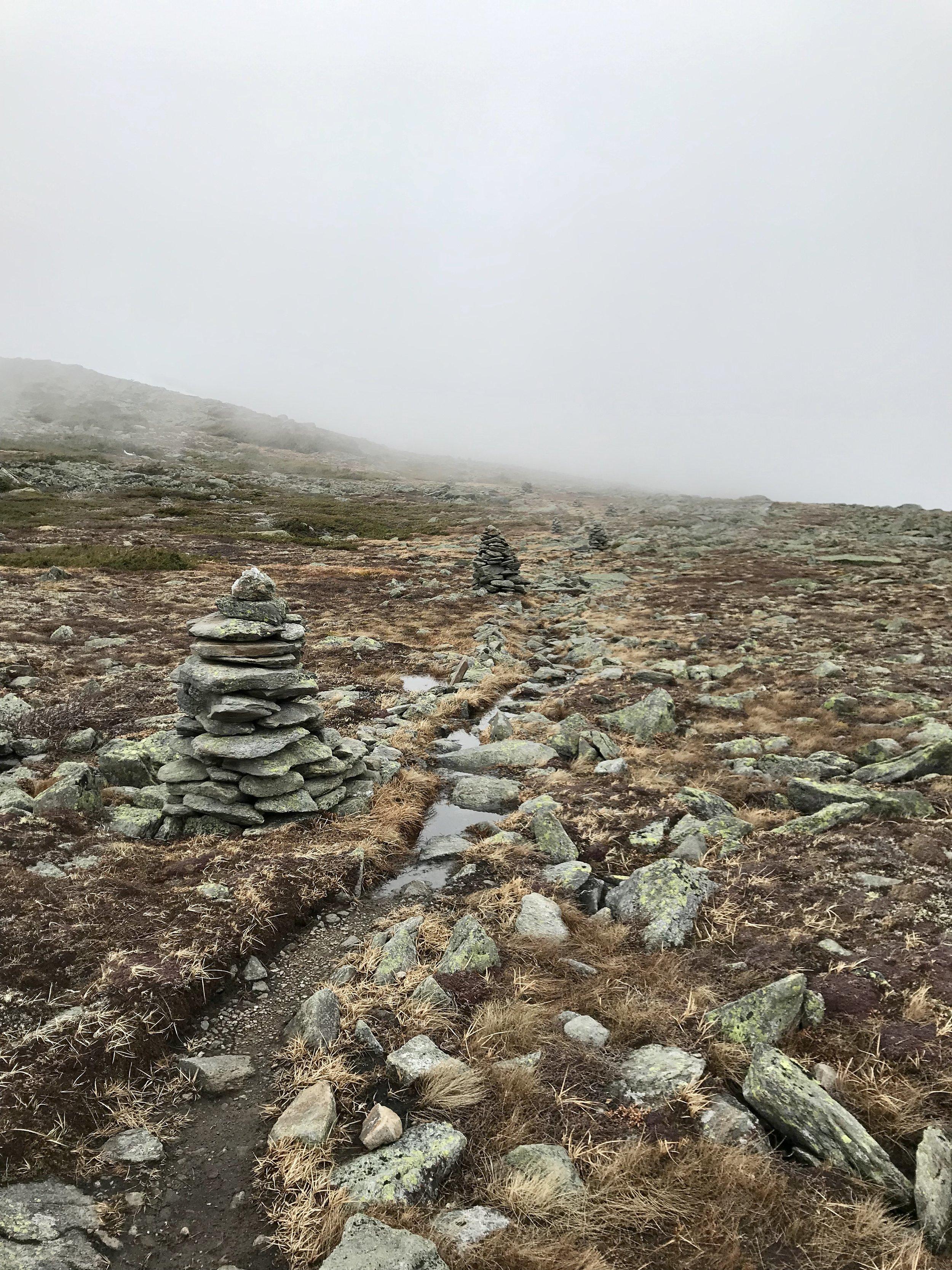 The Alpine Garden Trail