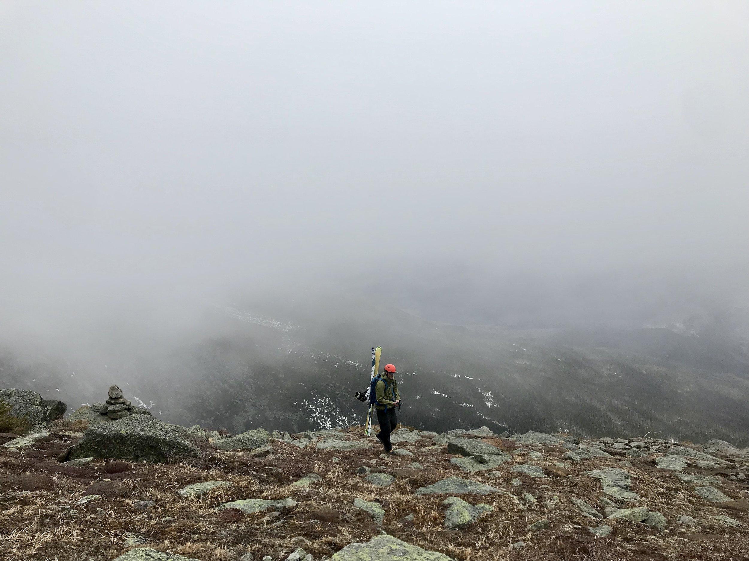 Fog in the Alpine Garden