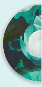 Half CD 2.jpg