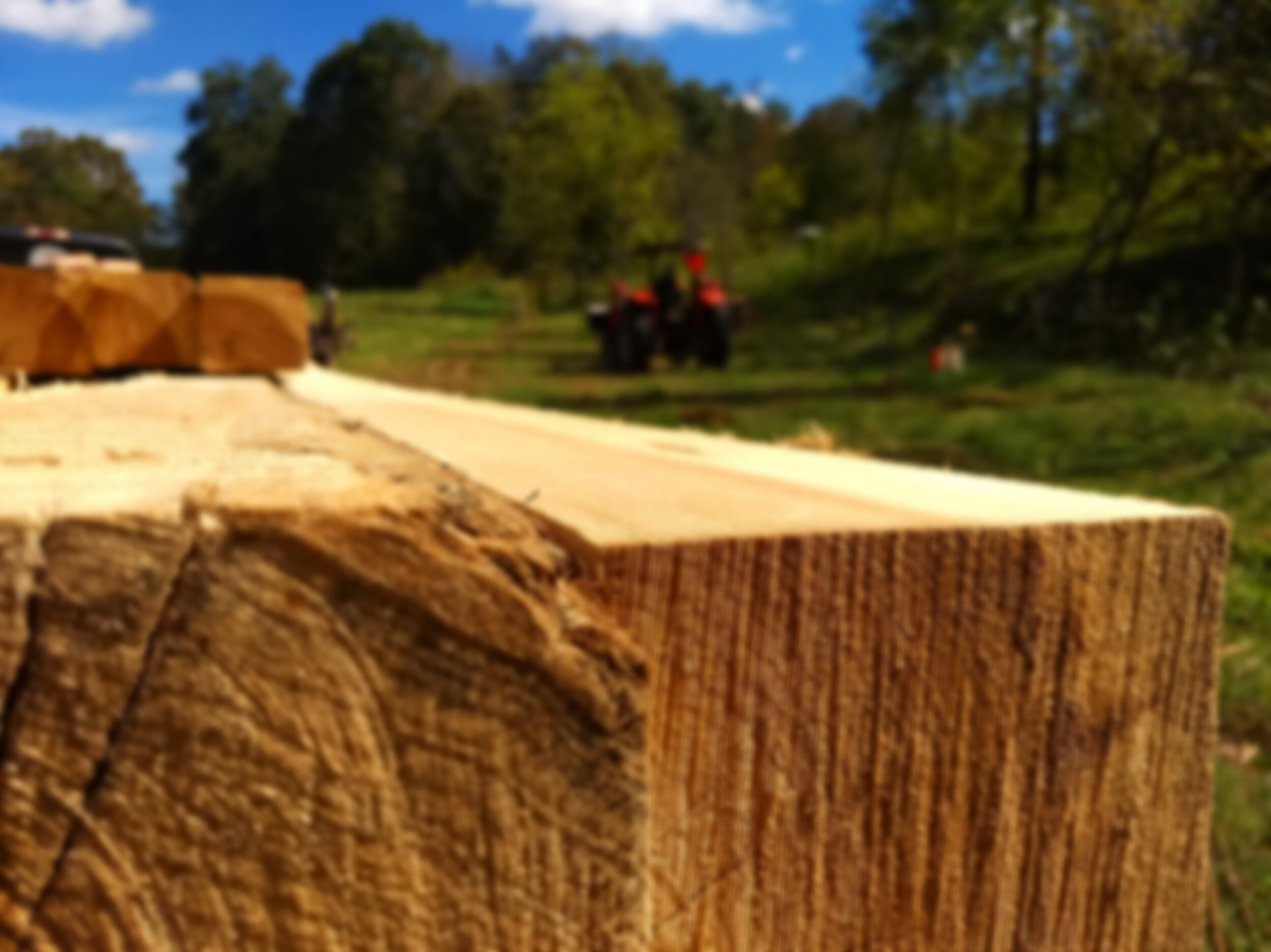 Using the Land - The posts that we are using for the barn are recently milled trees off the farm. It is a wonderful privilege to be able to use the resources that God has given us.