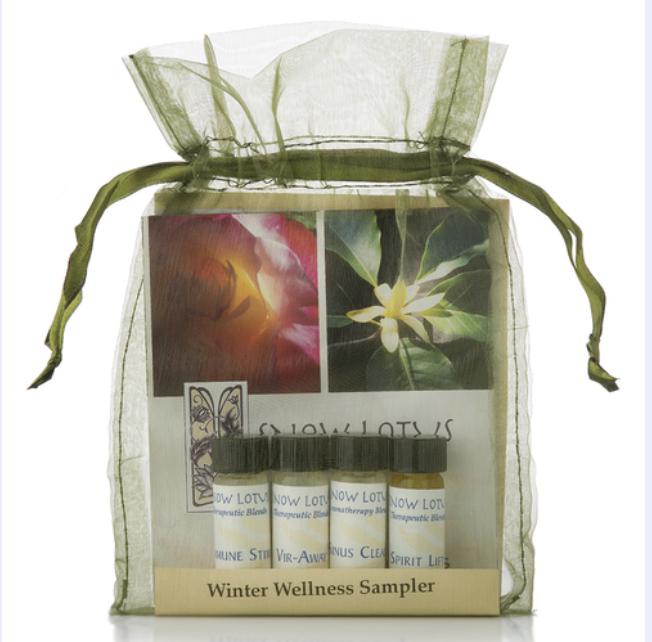 winter wellness kit.png