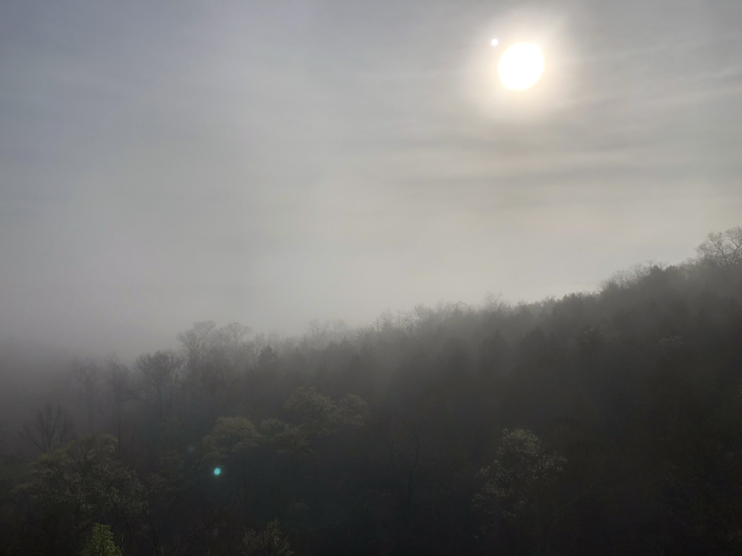 Fog in the Ozark Mountains