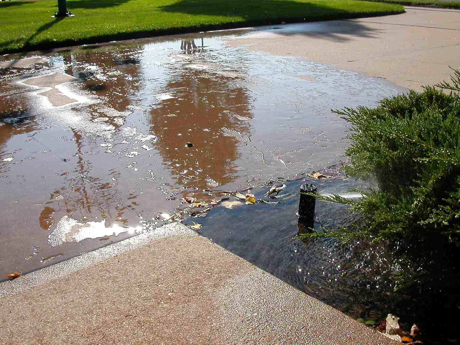 Flood from leaking rotor.jpg