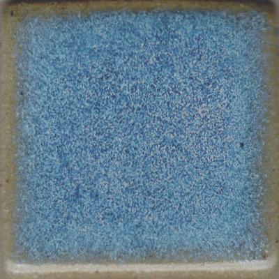 Opal G055