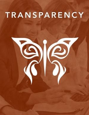 Transparency APM.jpg