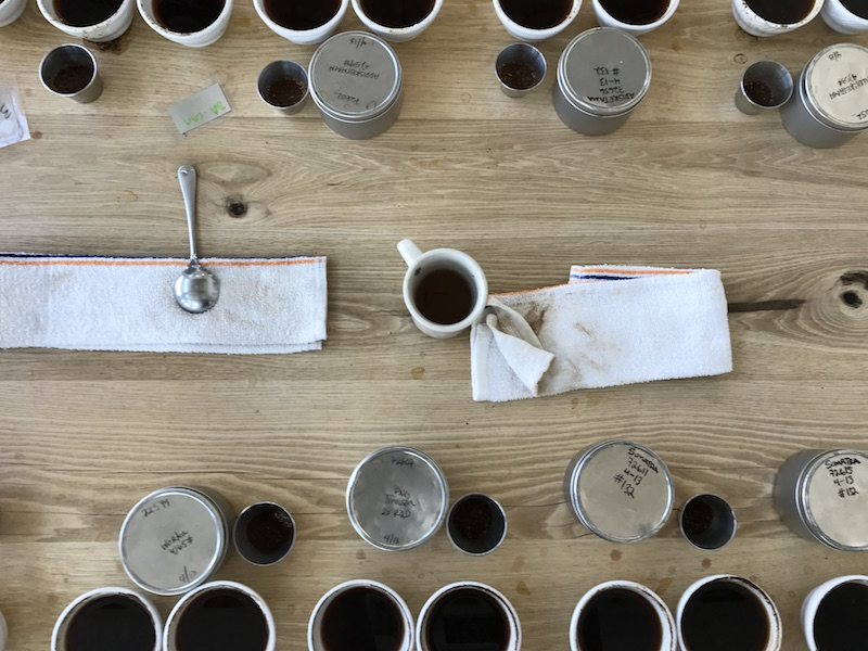Blue Bottle Coffee cupping