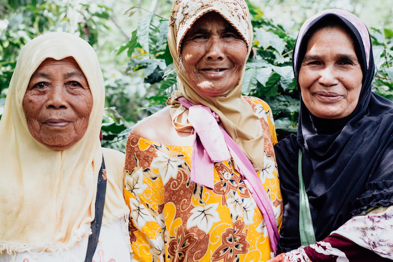 Coffee pickers in Suka Damai, members of the famous woman-owned Ketiara Cooperative
