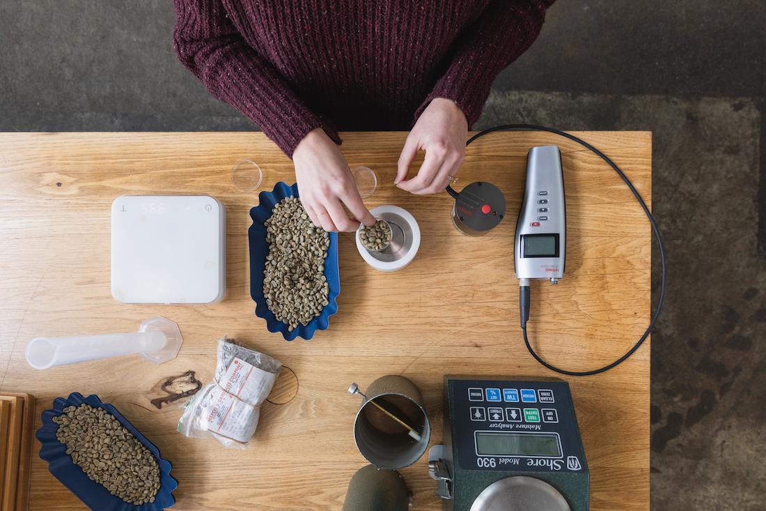 assessing green coffee.jpg
