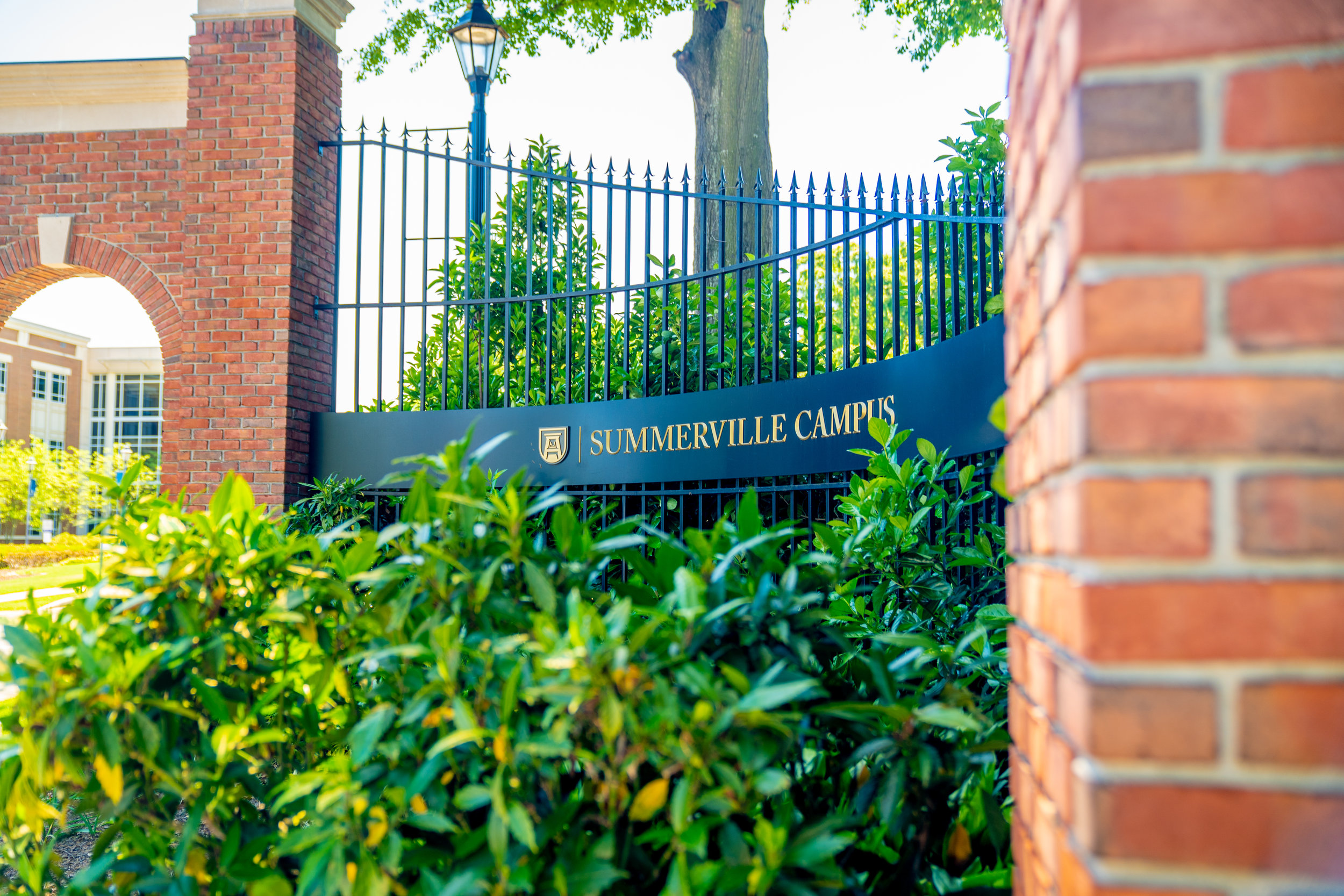 ASU_campus (4 of 15).jpg