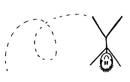 upsidedowncartwheelimage-1.jpg