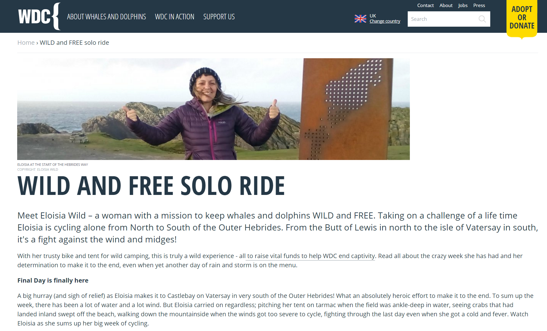 WILD & FREE SOLO CYCLE ONLINE  WHALE AND DOPLHIN CONSERVATION