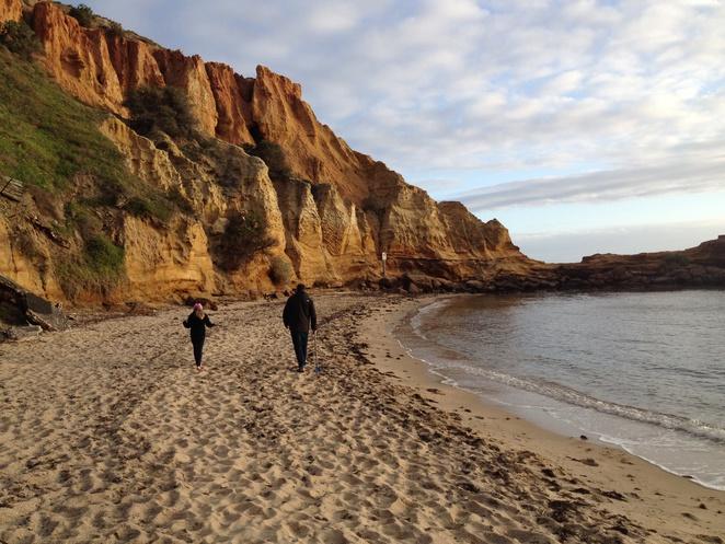 walk-sunset-family-fun-picnic-.jpg