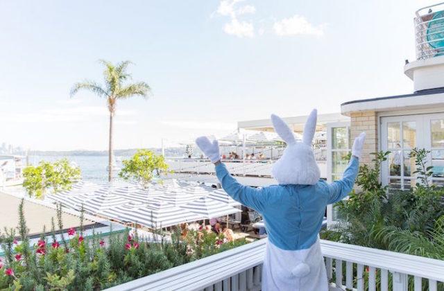 Easter-Watsons-Bay-bunny-640x420.jpg