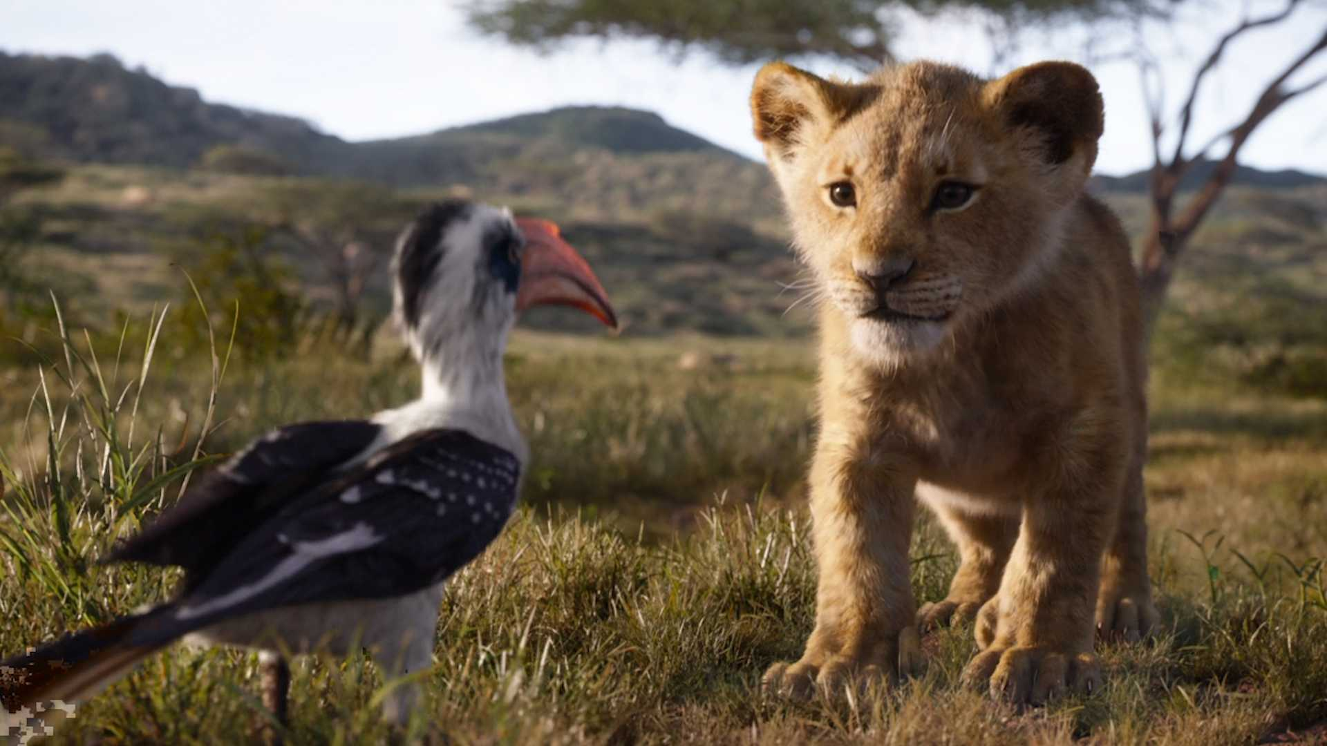 Source: The Lion King Trailer