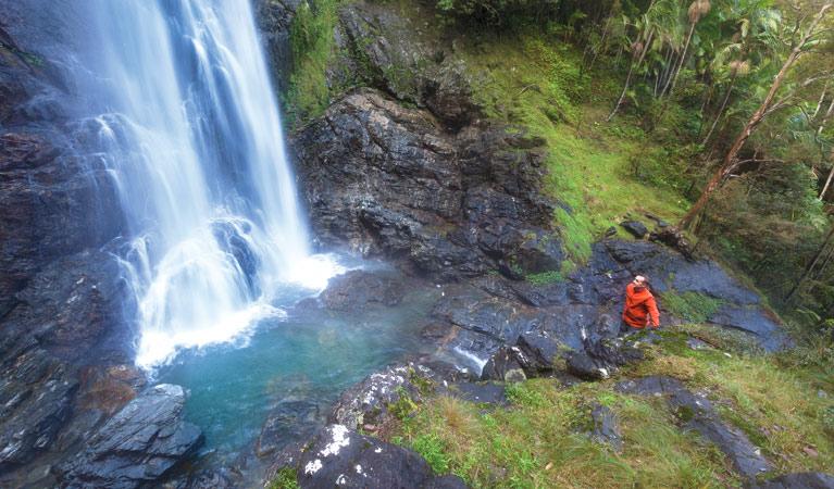red-cedar-falls-03.jpg
