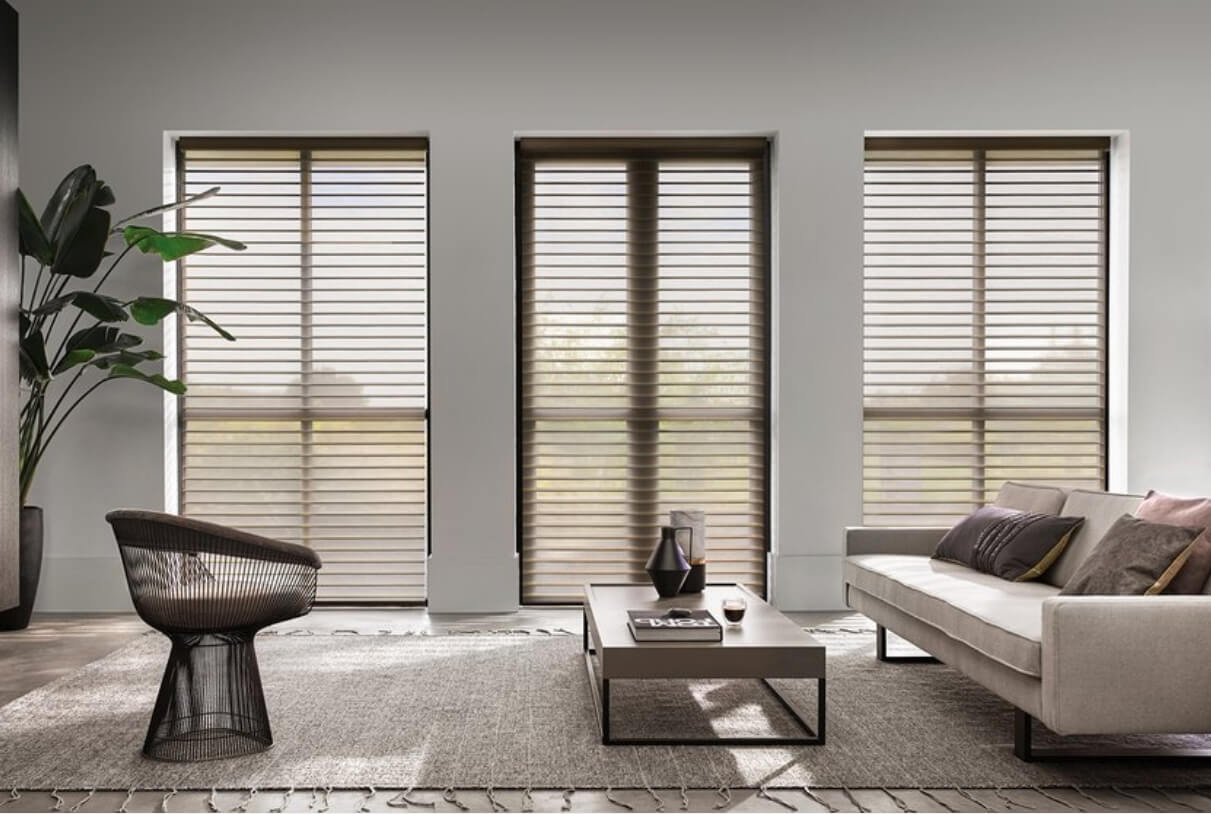 Sheer Window Shades    Silhouette window shades are a common choice with interior designers. The soft materials and sheer overlay screen the sun and provide stylish light control. Call Budget Blinds of Olympia & Tumwater for your custom window covering needs!