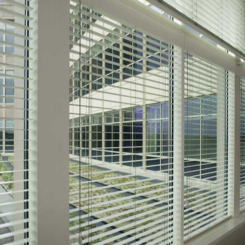 Mini Blinds    Mini blinds are available in endless colors. They provided a clean, professional look and are a durable solution for office spaces.