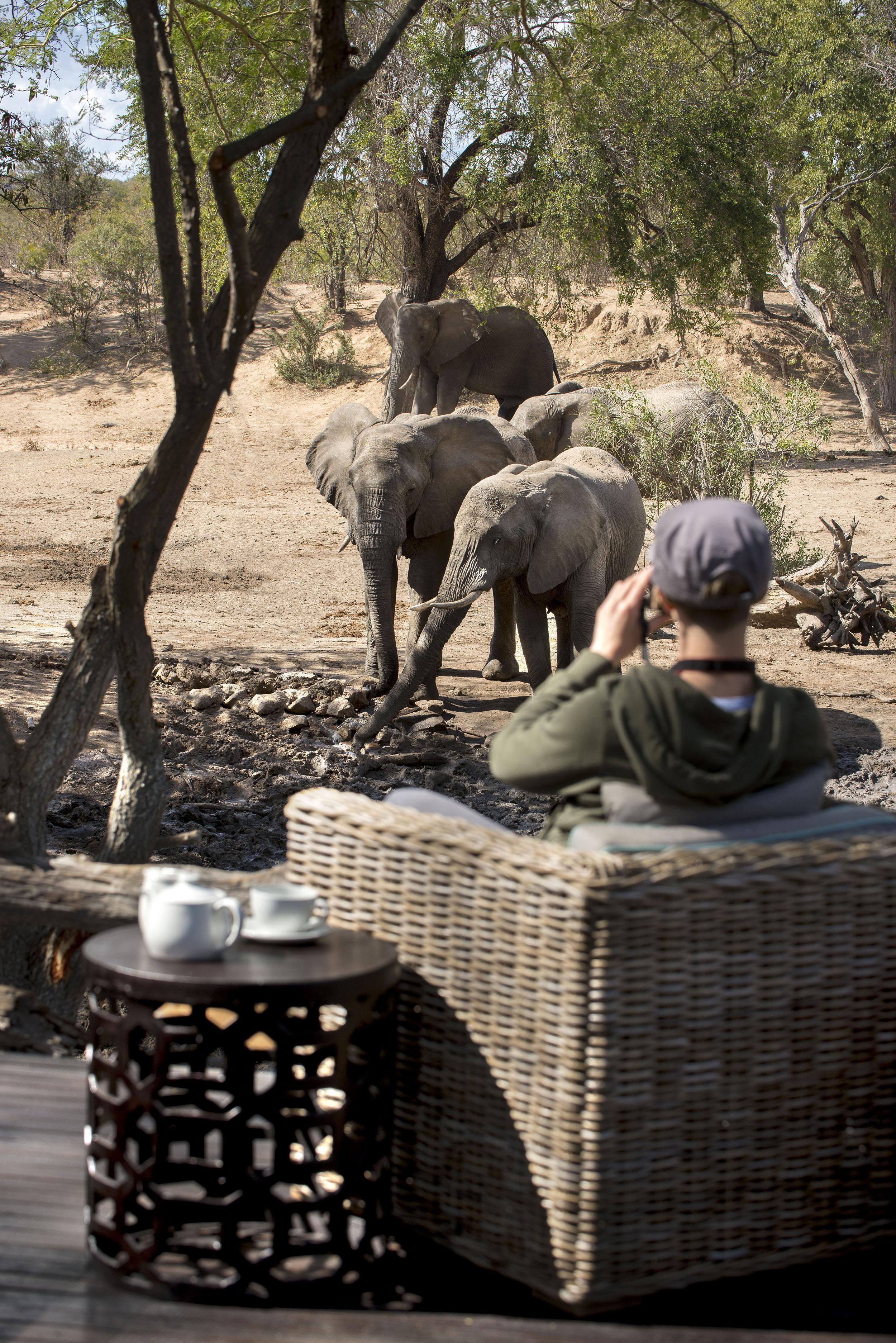 andBeyond-Ngala-Safari-Outside.jpg