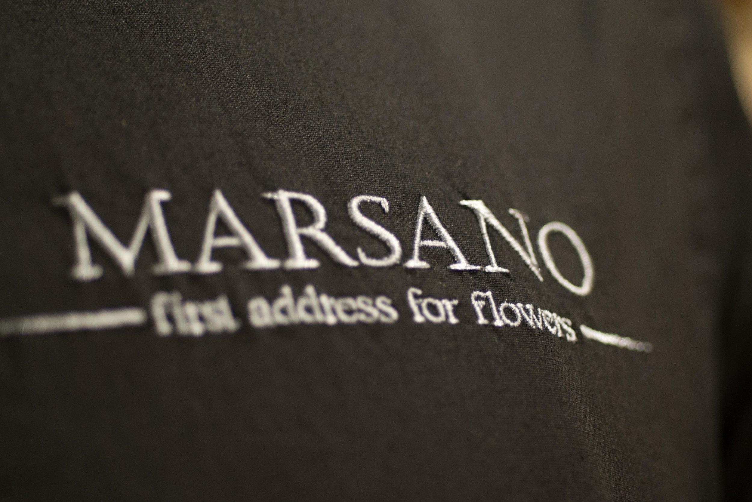 20190110-marsano-2386.jpg