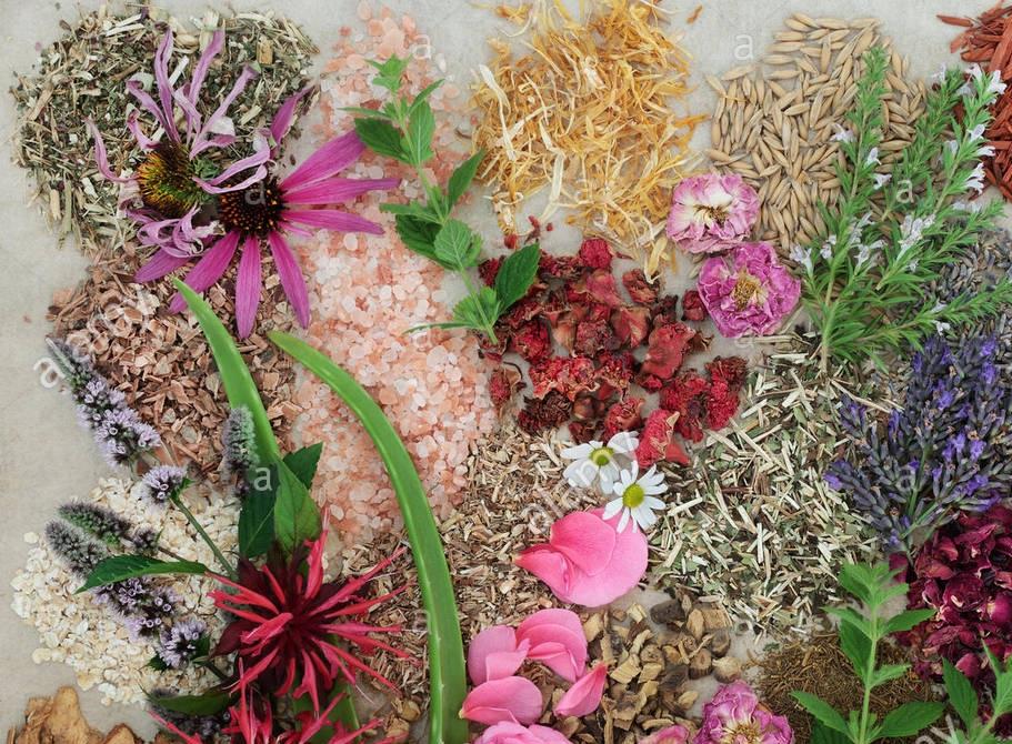 herbflowers.jpg