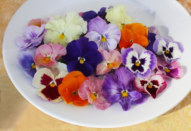 edible flowers1.jpg