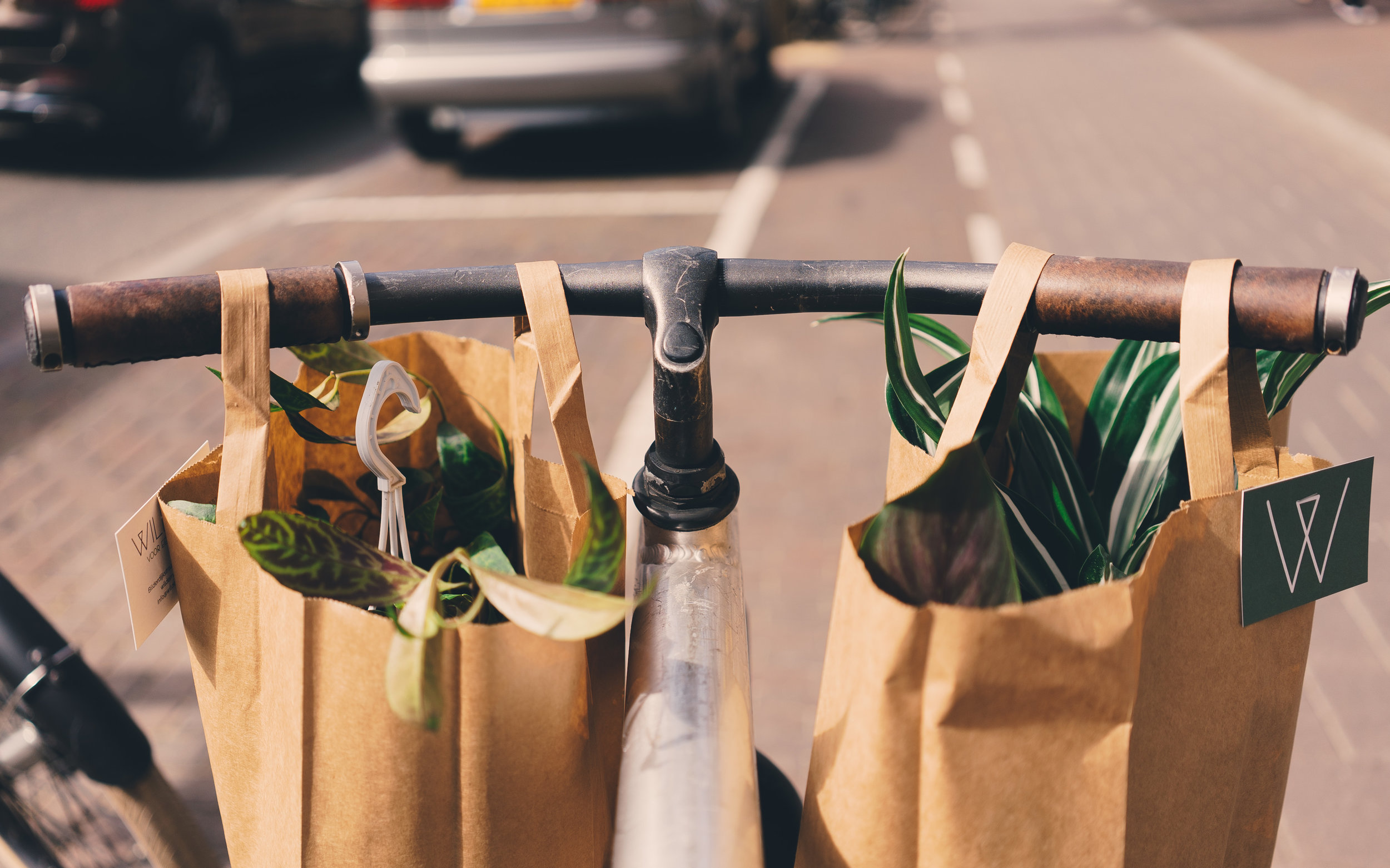 Paper bags are actually more carbon intensive than single use plastic bags. Cotton bags are even worse.